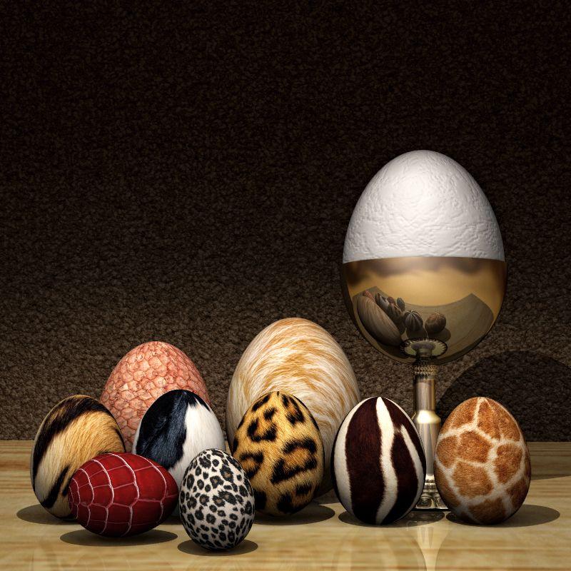 ilustracion huevos y pieles de animal