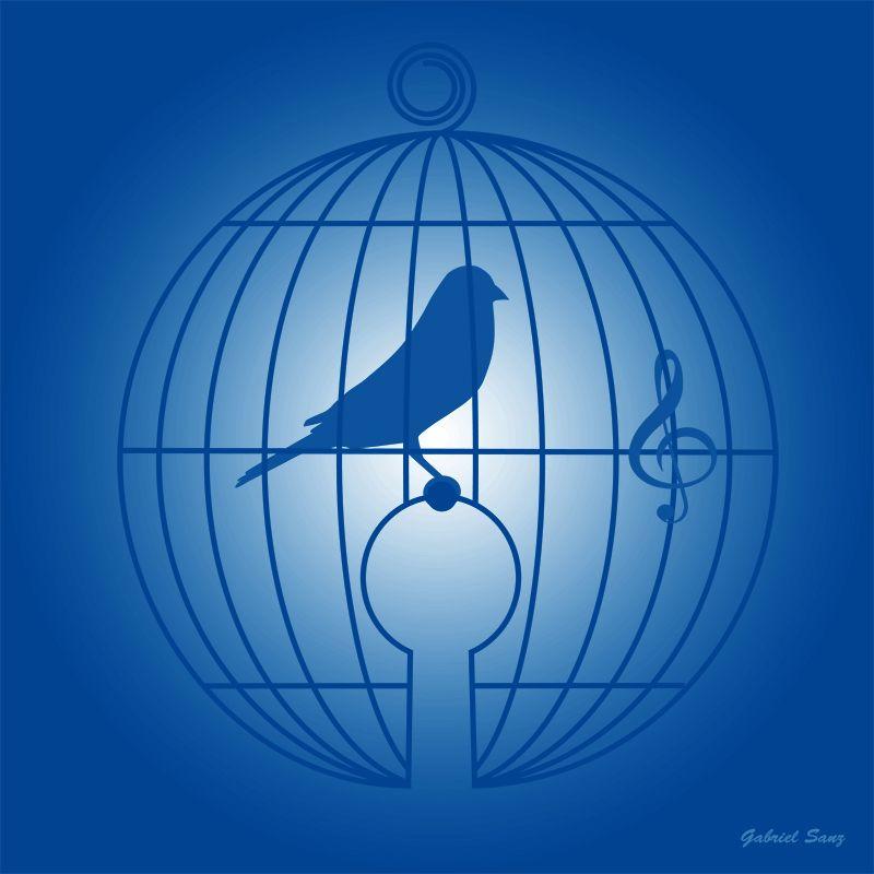 Jingle bird - ilustracion por Gabriel Sanz